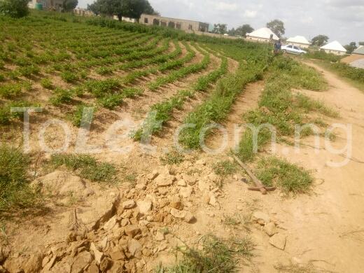 Land for sale mahuta,kaduna Kaduna South Kaduna - 0