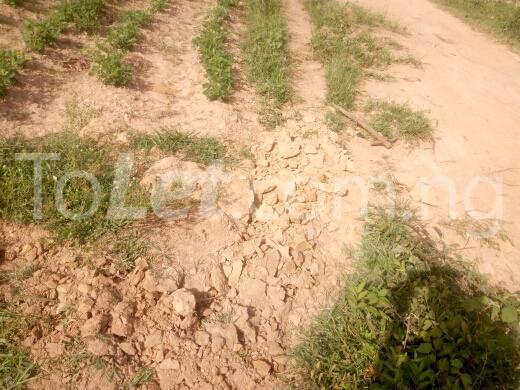 Land for sale mahuta,kaduna Kaduna South Kaduna - 2