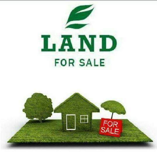 Land for sale Asaba Airport Asaba Delta - 1