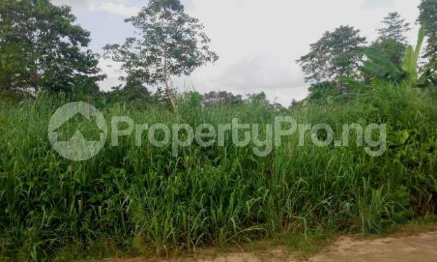 Mixed   Use Land Land for sale Ikot Eneobong Community Estate off 8-miles Calabar Cross River - 0