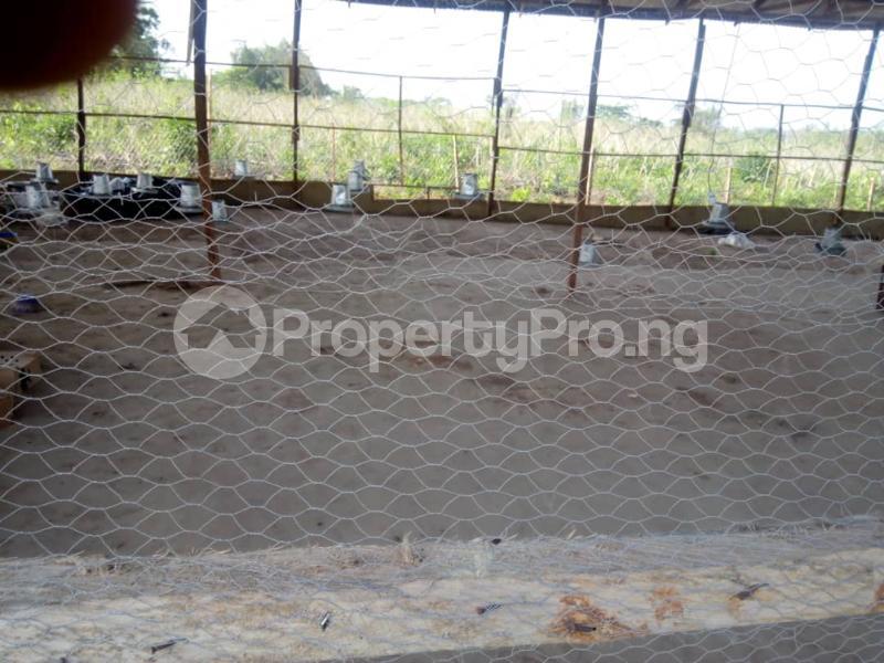 Factory Commercial Property for sale Omi Adio, off Ibadan/Abeokuta Expressway Omi Adio Ibadan Oyo - 5