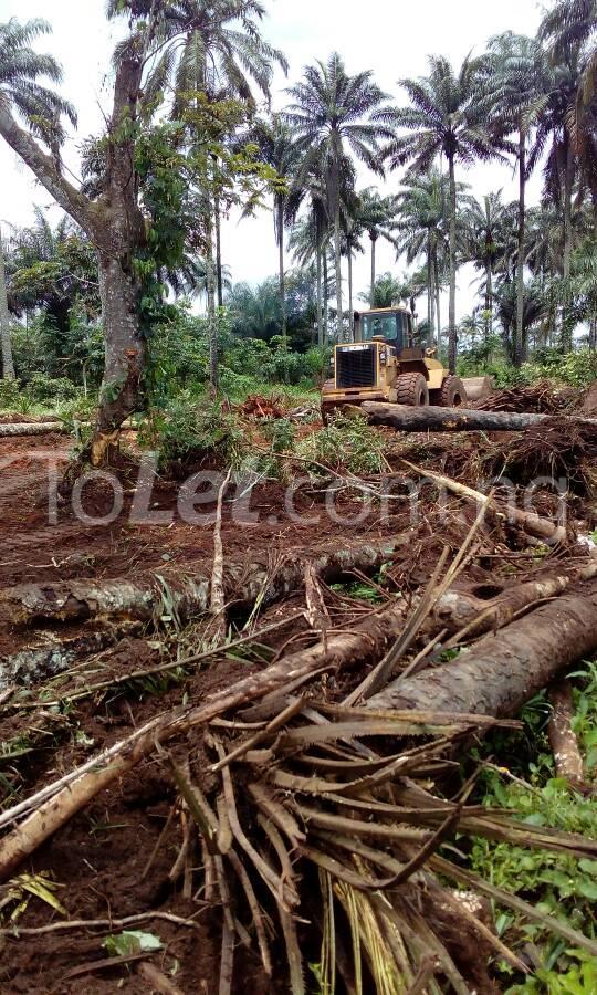 Land for sale Tehila Gardens Phase 2 is Located at Ngo Okpala, Along Aba Road, Owerri Owerri Imo - 5