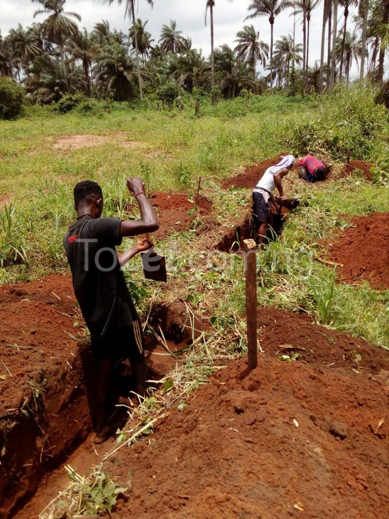 Land for sale Tehila Gardens Phase 2 is Located at Ngo Okpala, Along Aba Road, Owerri Owerri Imo - 3