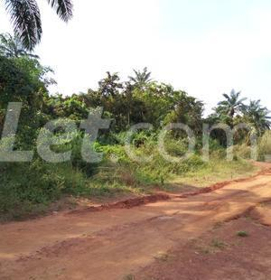 Residential Land Land for sale Nkwelle, Anambra Oyi Anambra - 1