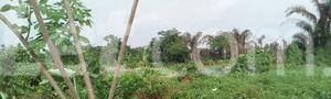Mixed   Use Land Land for sale Ise/Orun Ise/Orun Ekiti - 13