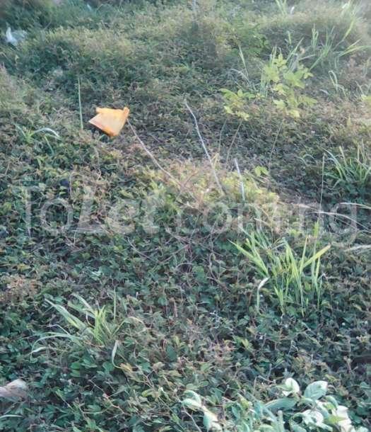 Land for sale Ijebu Ode, Ogun Ijebu Ogun - 2
