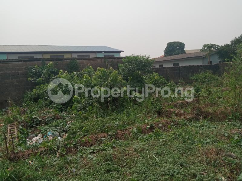 Mixed   Use Land Land for sale New London Estate Baruwa Baruwa Ipaja Lagos - 5