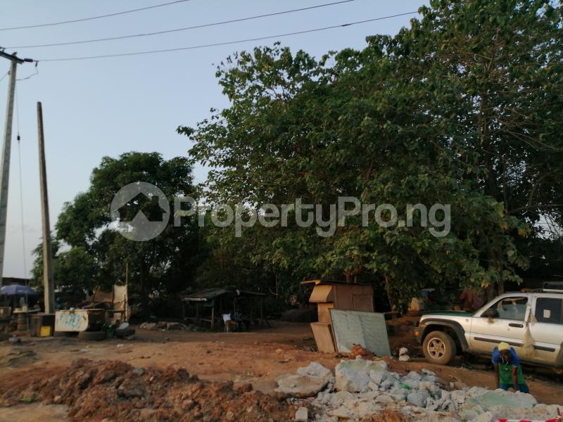 Mixed   Use Land Land for sale 0 Mafoluku Oshodi Lagos - 3