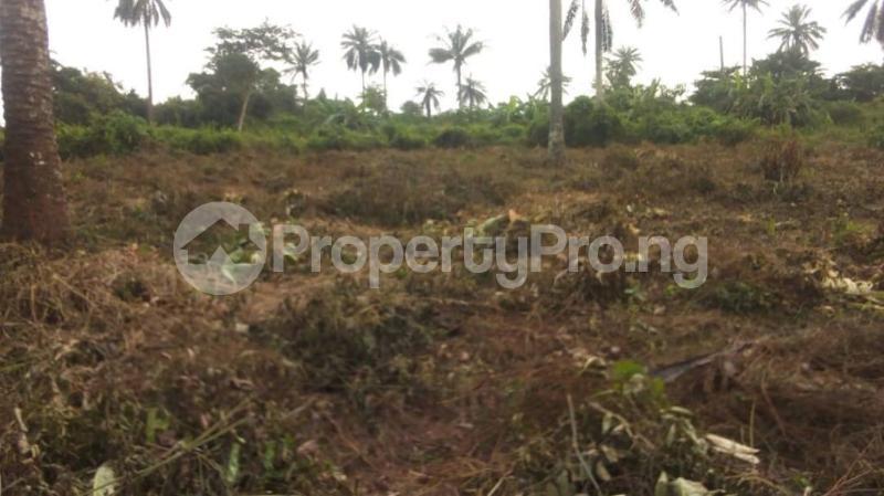 Land for sale Badeku egbeda , Iwo road Iwo Rd Ibadan Oyo - 5