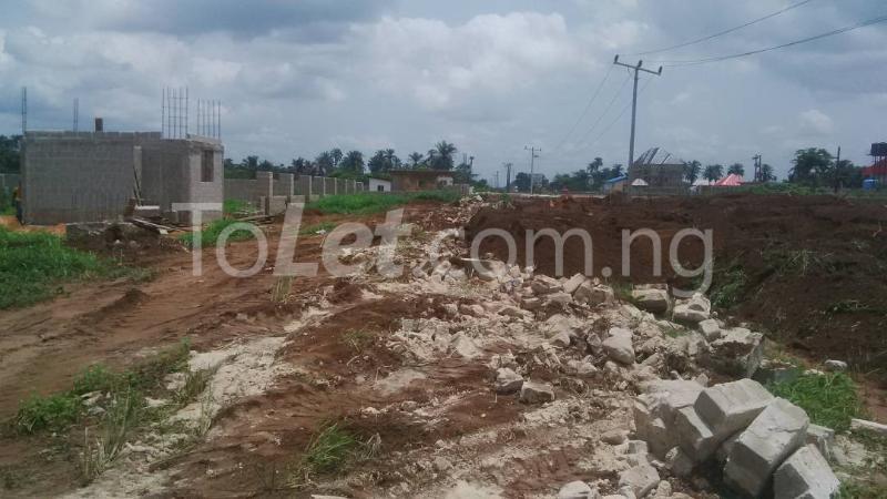 Land for sale Along Aba-Owerri road Owerri Imo - 2
