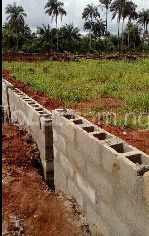 Land for sale Along Aba-Owerri road in Ngo-okpala community,Owerri Nortn LGA Ngor-Okpala Imo - 1