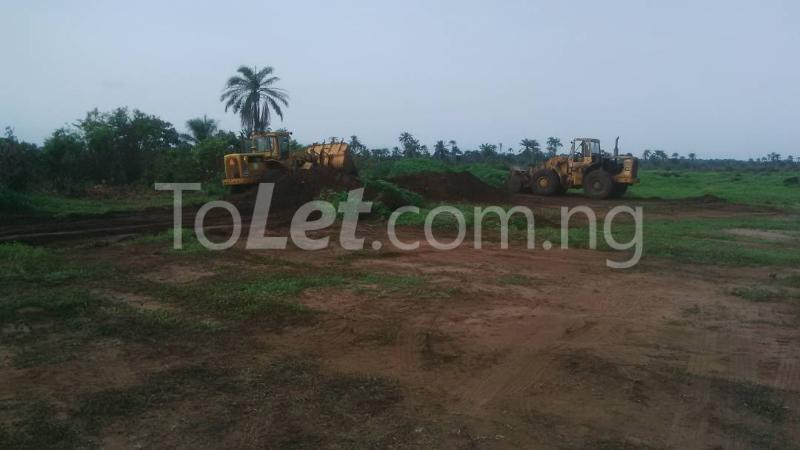 Land for sale Ngor-Akpala Ngor-Okpala Imo - 3
