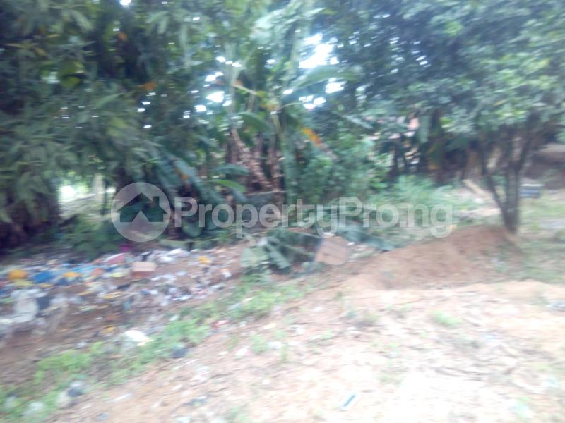 1 bedroom mini flat  Mixed   Use Land Land for sale Ibafo Obafemi Owode Ogun - 3
