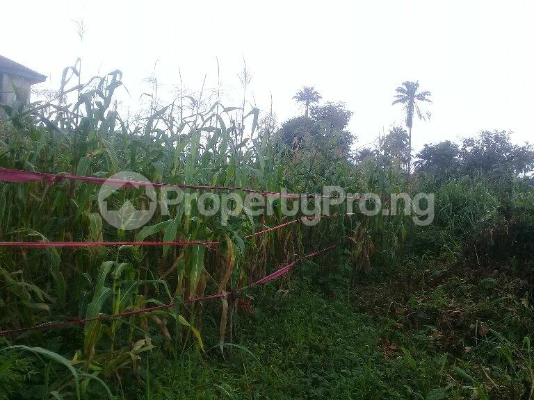 Mixed   Use Land Land for sale Eneka Port Harcourt Rivers - 3