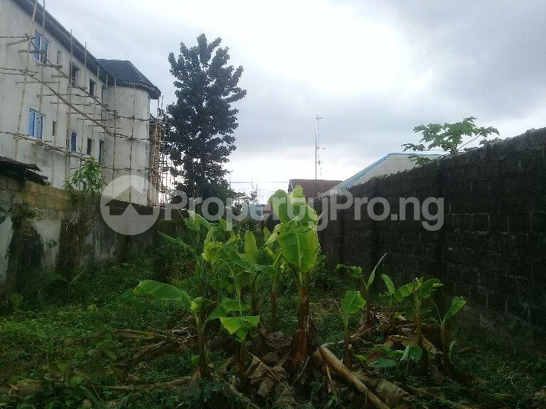 Mixed   Use Land Land for sale Eneka Port Harcourt Rivers - 6