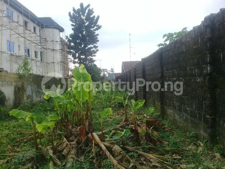 Mixed   Use Land Land for sale Eneka Port Harcourt Rivers - 2
