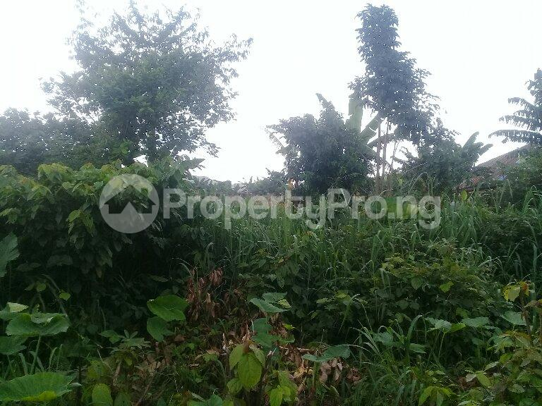 Mixed   Use Land Land for sale Eneka Port Harcourt Rivers - 4