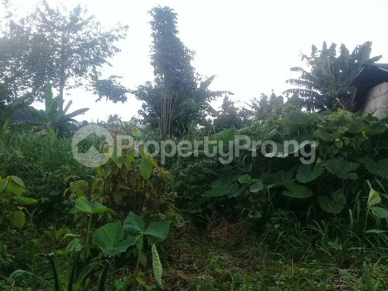Mixed   Use Land Land for sale Eneka Port Harcourt Rivers - 0
