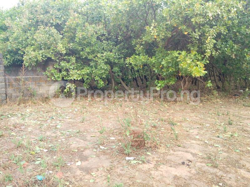Residential Land Land for sale Dape Dape Abuja - 1