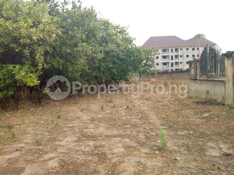 Residential Land Land for sale Dape Dape Abuja - 3