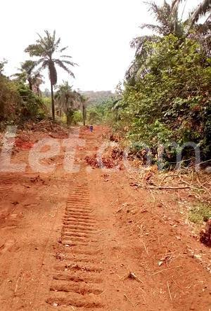 Residential Land Land for sale Nkwelle, Anambra Oyi Anambra - 10