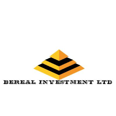 Bereal Investment Ltd