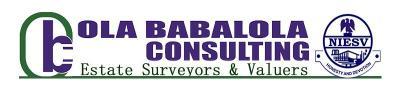 Ola Babalola Consulting