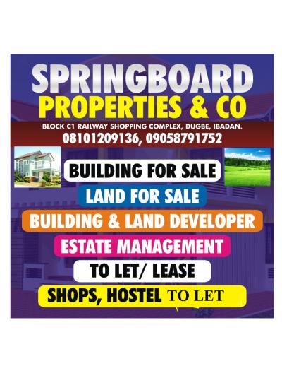 springboard properties & co