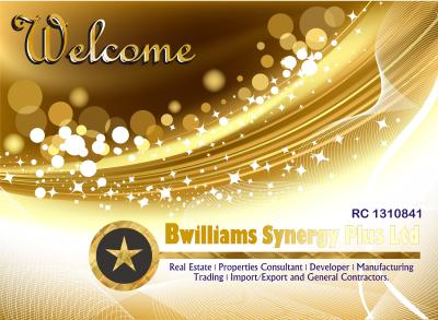 Bwilliams Synergy Plus Ltd