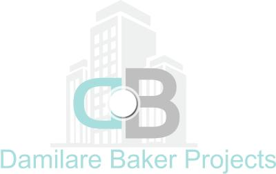 Damilare Baker Projects