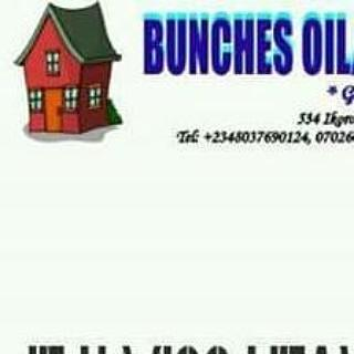 Bunches properties