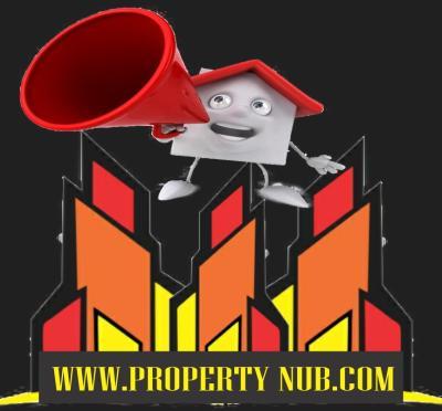 Property Nub