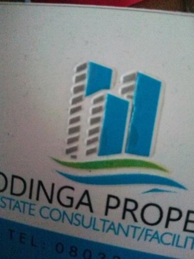 ODINGA  E PROPERTY LTD