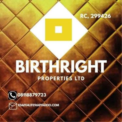 Birthright Properties Limited, RC,  299426