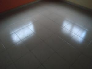1 bedroom mini flat  Mini flat Flat / Apartment for rent Shasha very close to Eco Court Estate Shasha Alimosho Lagos