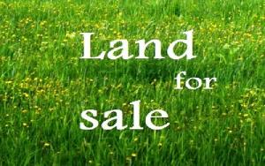 Land for sale Monastery Road Sangotedo Ajah Lagos