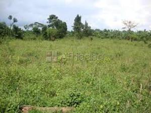 Land for sale NNPC Mega Station Area Akure Ondo