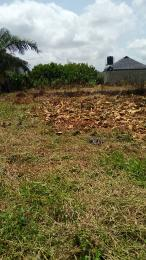 Residential Land Land for sale Bello Osagie Akesan Alimosho Lagos