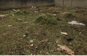 Residential Land Land for sale Oleyo Akala Express Ibadan Oyo