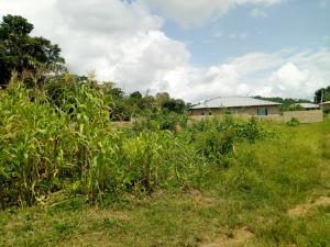 Residential Land Land for sale Adelowo Street, near Ayegun market, Ayegun-Oleyo Area off Asipa-Tipper garage Akala Express Ibadan Oyo