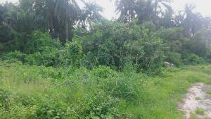 Land for sale Aguawka, besides Nnamdi Azikiwe university  Awka North Anambra