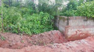 Land for sale Beside Nnamdi Azikiwe Universsity Awka (along Enugu Onitsha Expressway)  Idemili south Anambra