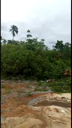 Commercial Land Land for sale Iyanomor community, sapele road by-pass by BIU Oredo Edo