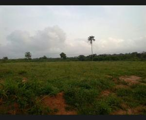 1 bedroom mini flat  Mixed   Use Land Land for sale - Mowe Obafemi Owode Ogun