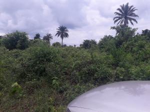 Commercial Land Land for sale - Mowe Obafemi Owode Ogun