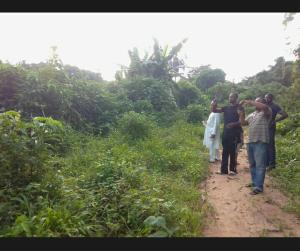 1 bedroom mini flat  Mixed   Use Land Land for sale - Mowe Obafemi Owode Ogun