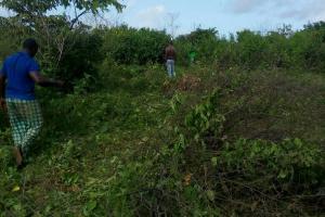 Land for sale Agbekodo Eleranigbe Ibeju-Lekki Lagos