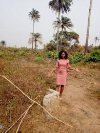 Mixed   Use Land Land for sale ... Owerri Imo