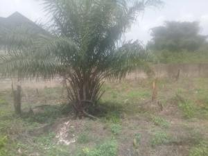 Residential Land Land for sale Along the tarred road off Aruogba after Iyekogba estate airport road  Oredo Edo