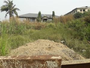 Industrial Land Land for sale facing express by emperor estate Sangotedo Ajah Lagos